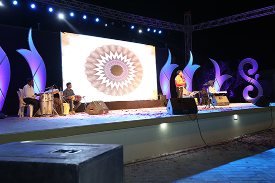 Lawn Stage for Performers, Dancer, Singer
